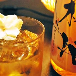 大盃の梅酒 【牧野酒造】