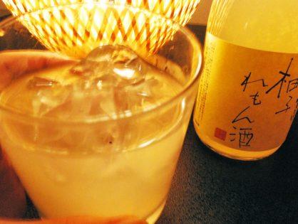柚子レモン酒 【龍神酒造】